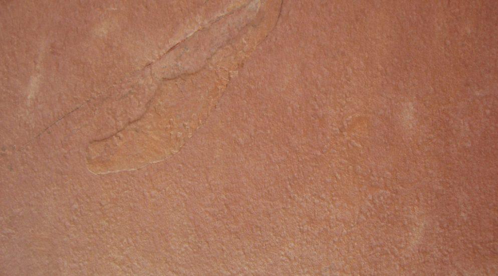 Сланец Terra Red